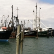 Hamptons Fishing Fleet
