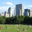 Sheeps Meadow in Central Park